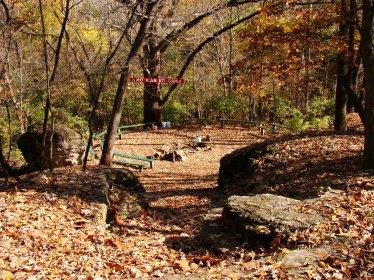 DixonFamily Fall Winter 2009 1990